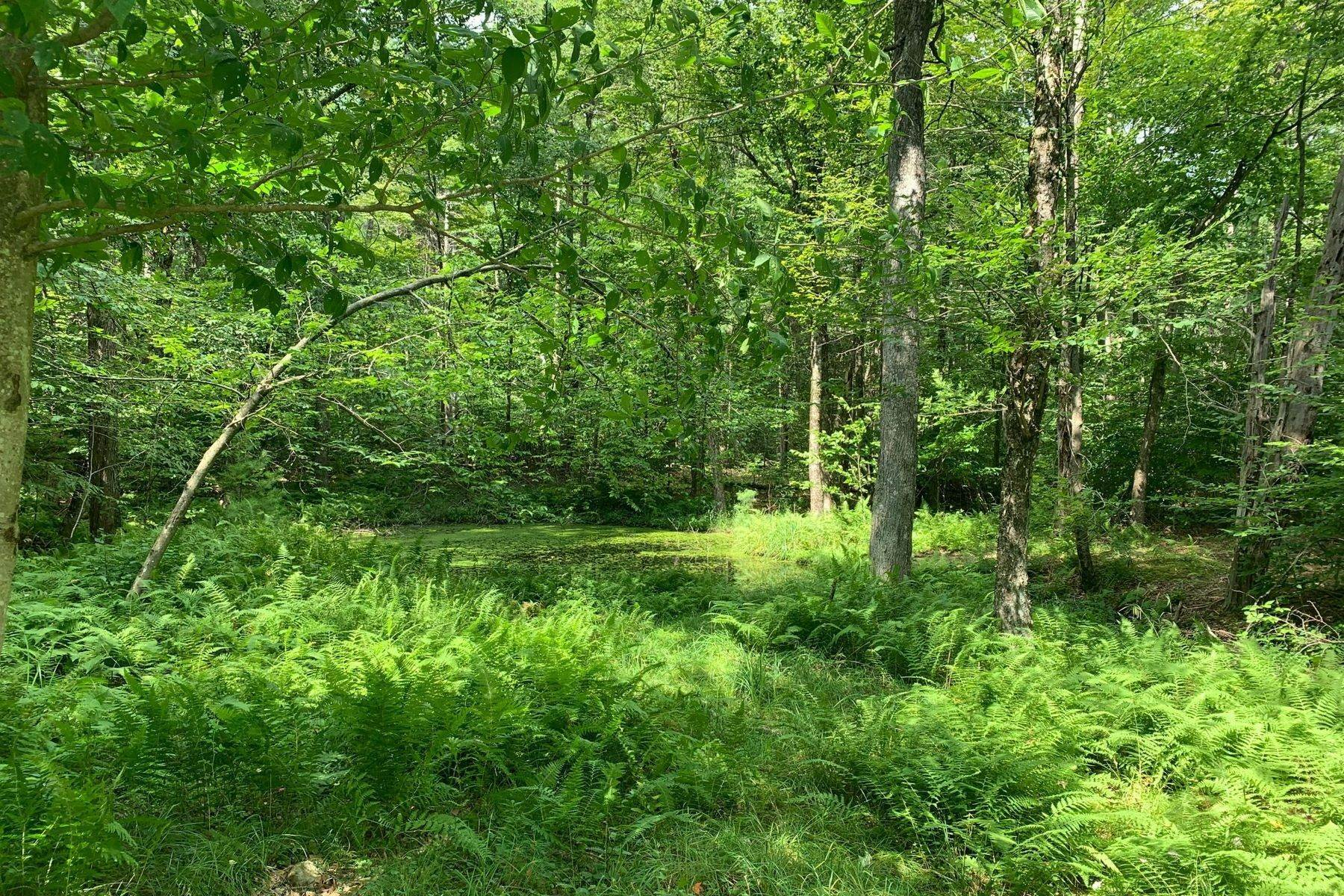 6. Land for Sale at Swinging Bridge Waterfront at The Chapin Estate Lot 23 Woodstone Trail Bethel, New York 12720 United States