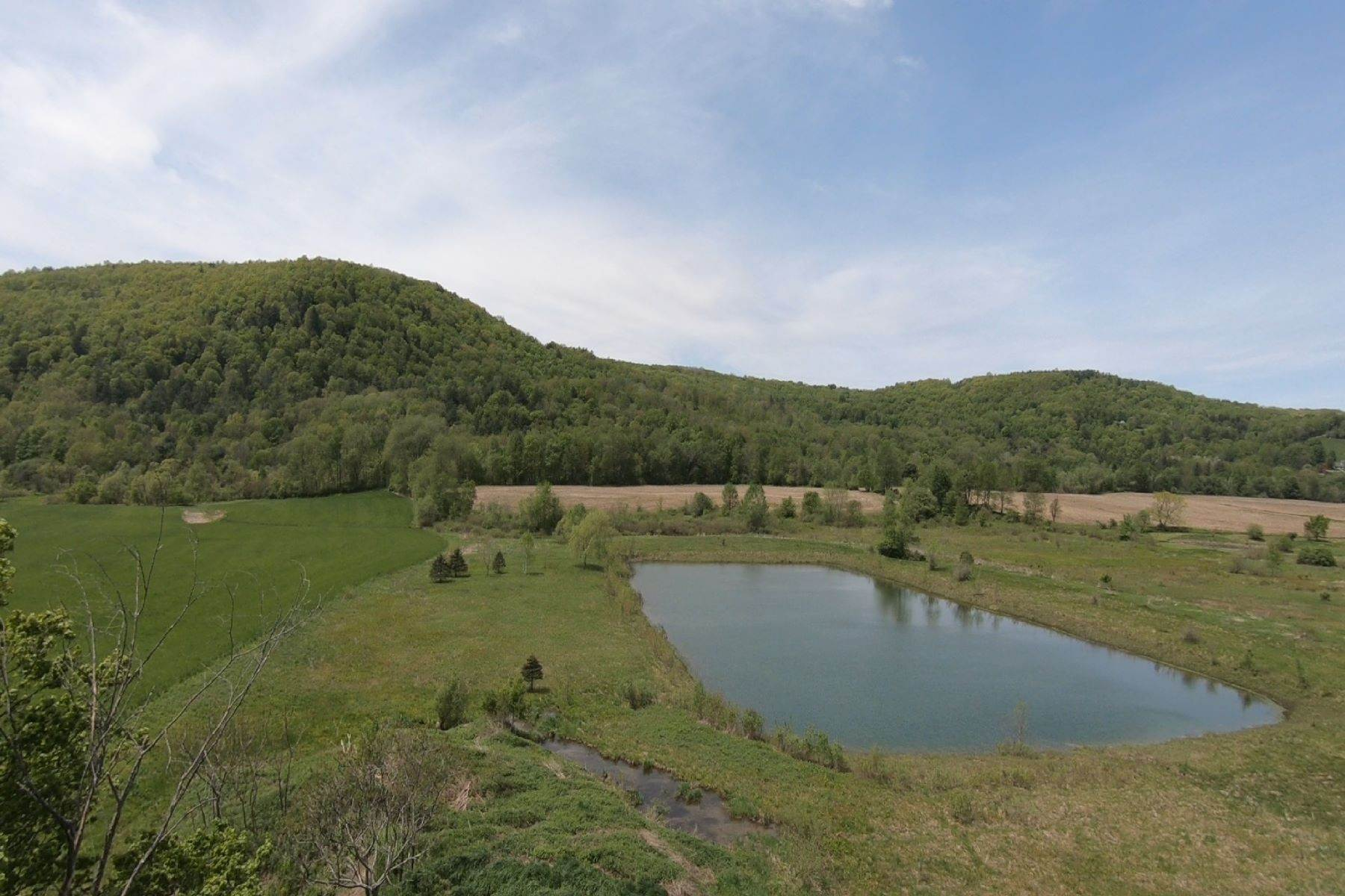Land for Sale at Black Creek Valley Sportsman's Getaway 3041 County Route 30 Salem, New York 12865 United States