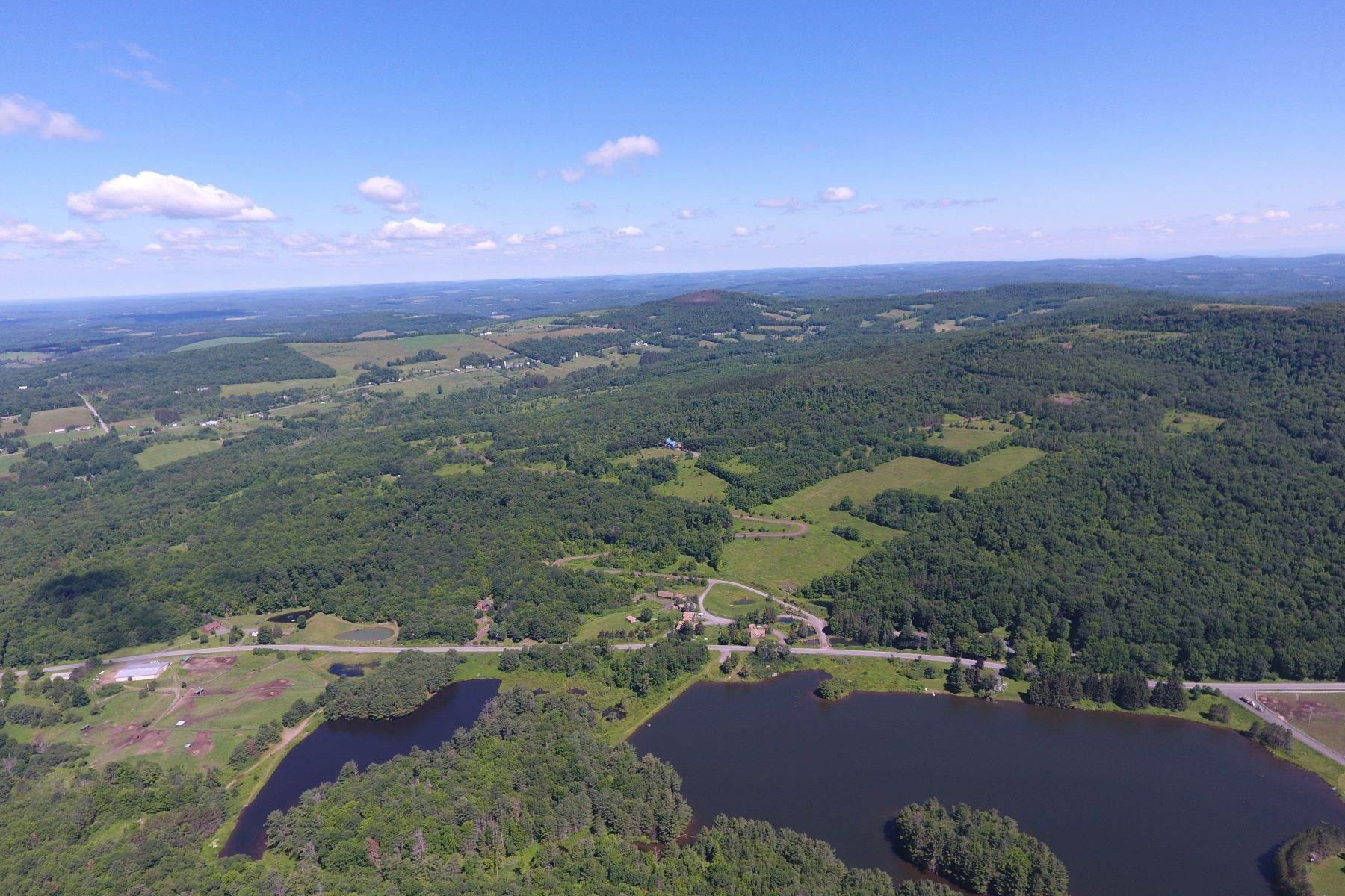 Land for Sale at 1 Castle Mountain Rd Stamford, New York 12167 United States