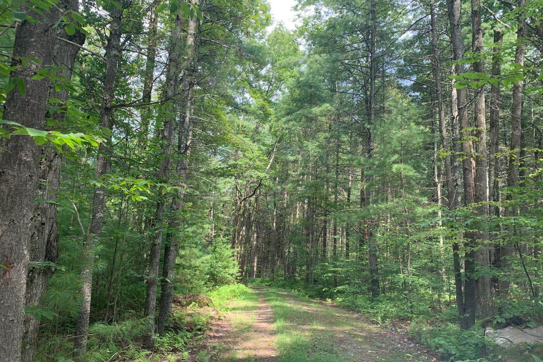 3. Land for Sale at The Chapin Estate - Lakefront lot on Swinging Bridge Lot 13 Woodstone Trail Bethel, New York 12720 United States