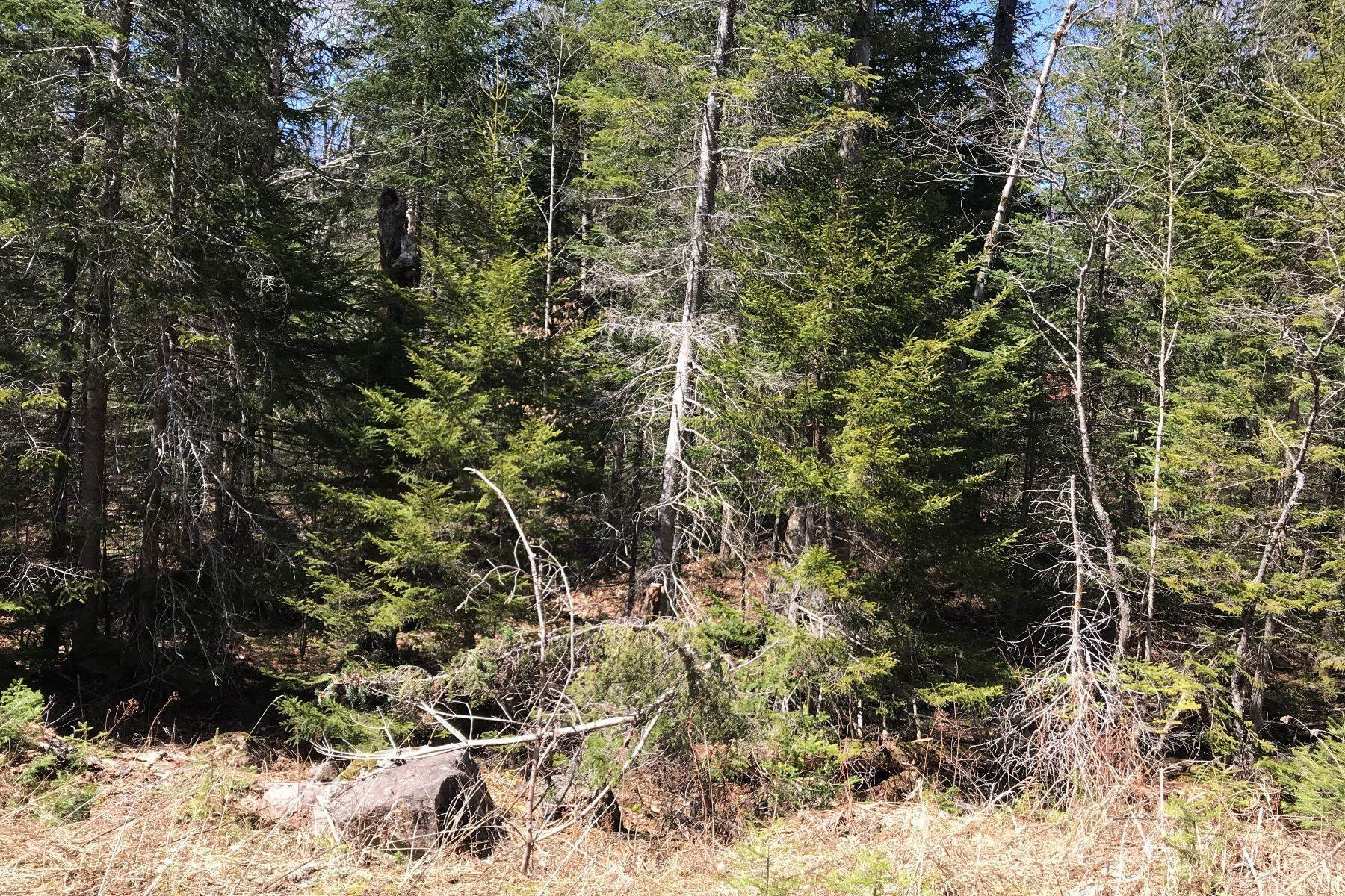 Land for Sale at Quiet Lot on Sequioa Road 00 Sequioa Road Thendara, New York 13472 United States