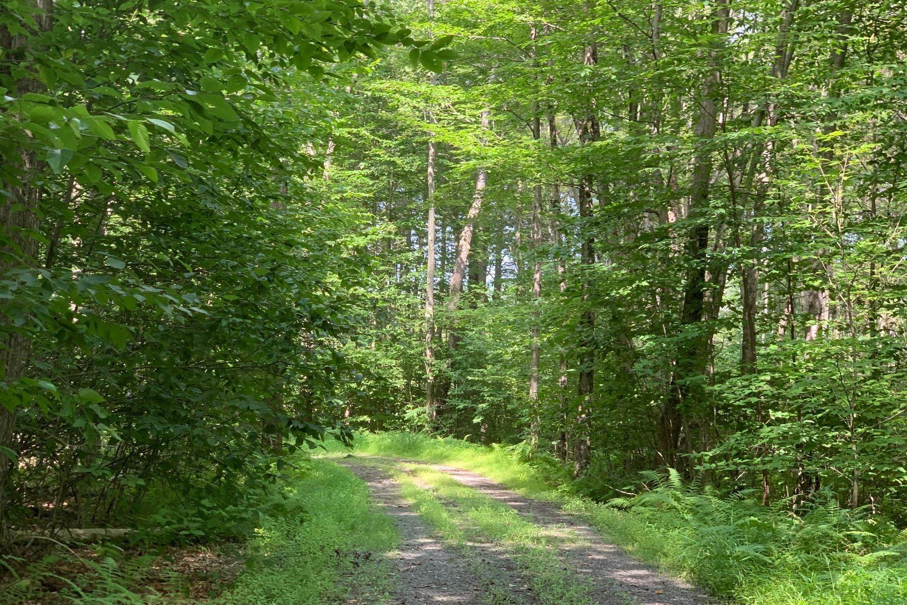 5. Land for Sale at Lakefront Building Site at The Chapin Estate Lot 28 Woodstone Trail Bethel, New York 12720 United States