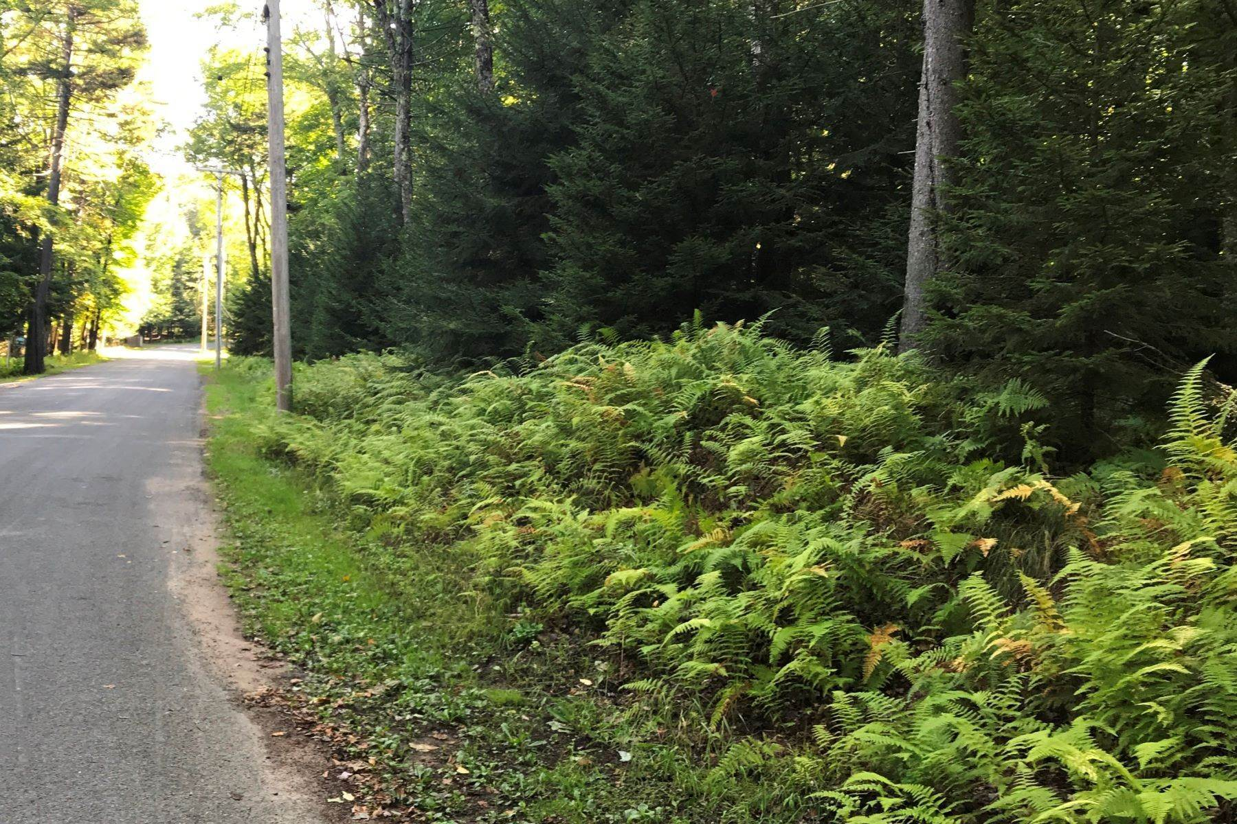 Land for Sale at Sonne Road Building Lot 00 Sonne Road Old Forge, New York 13420 United States