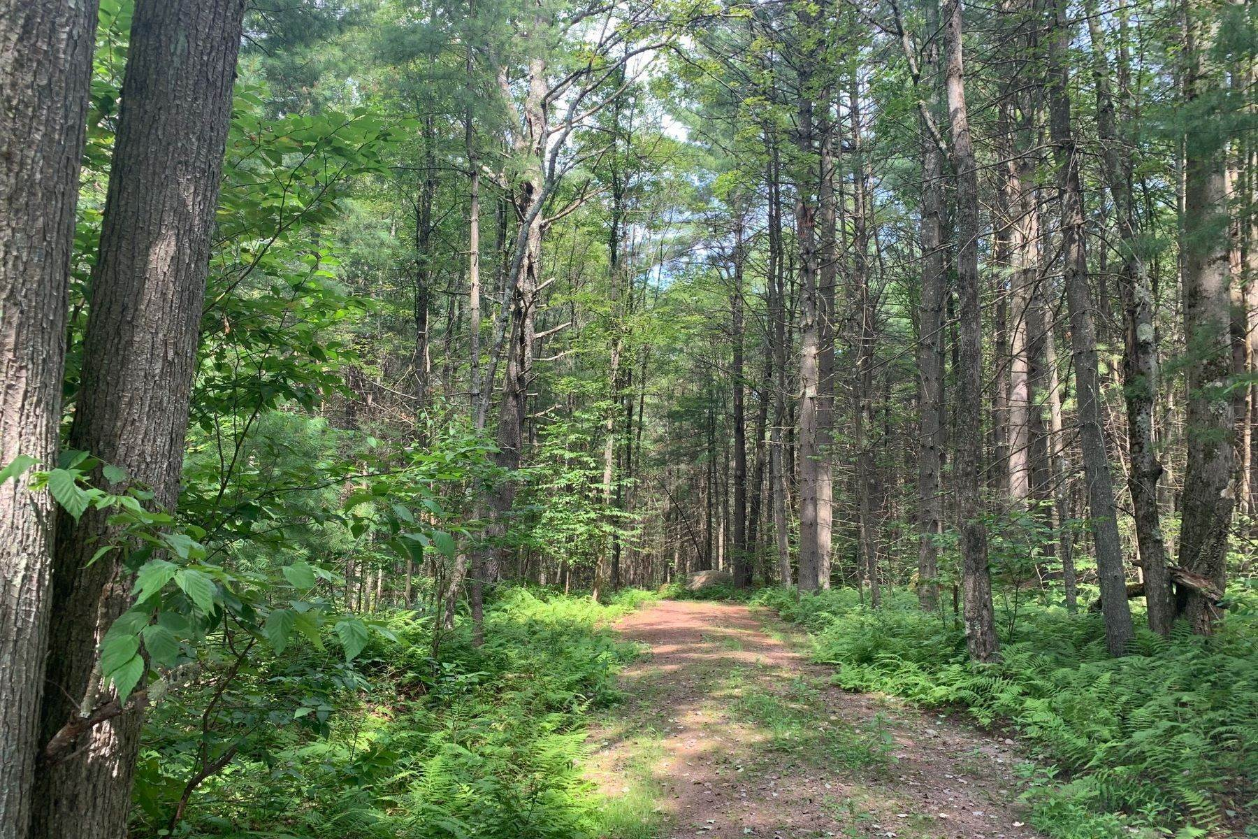 4. Land for Sale at The Chapin Estate - Lakefront lot on Swinging Bridge Lot 13 Woodstone Trail Bethel, New York 12720 United States