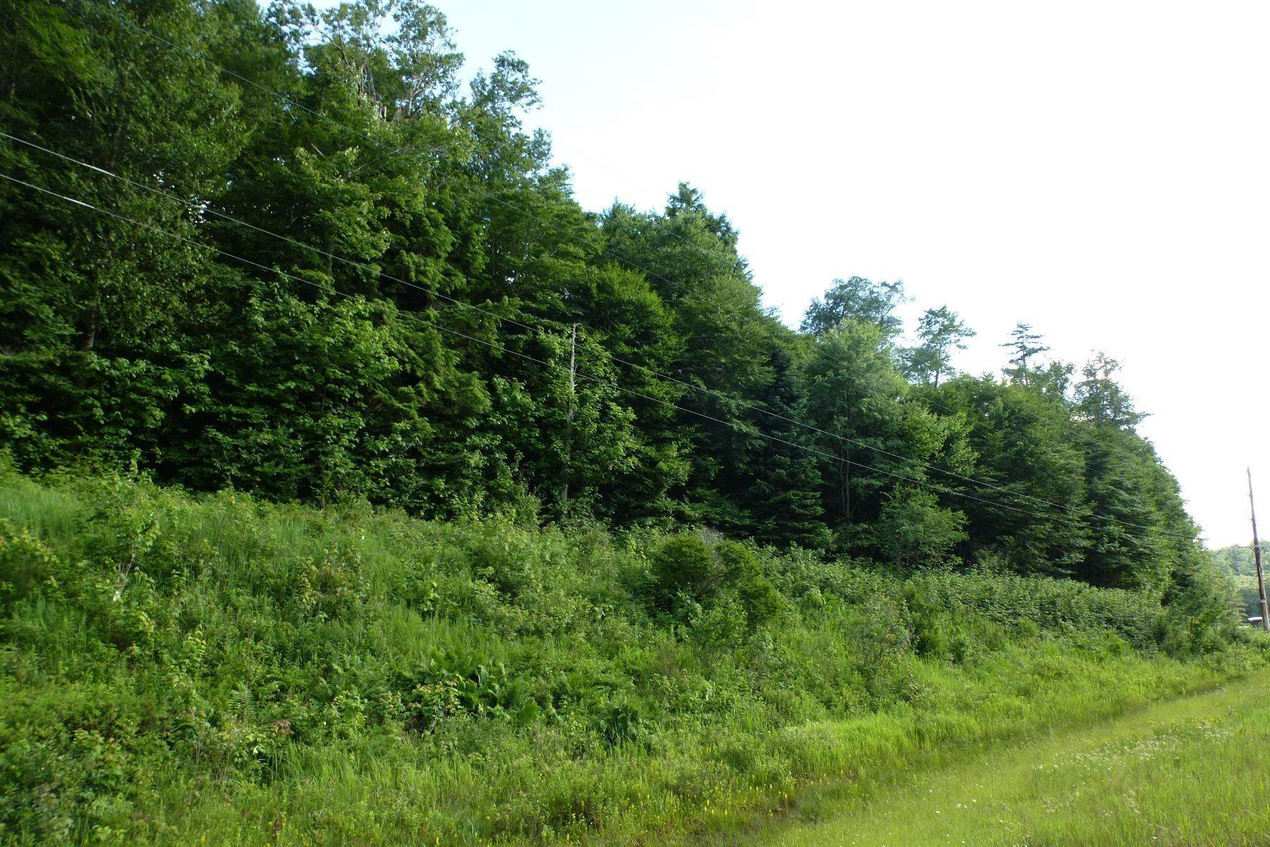 Land for Sale at State Route 28 Building Lot 00 State Route 28 Thendara, New York 13472 United States