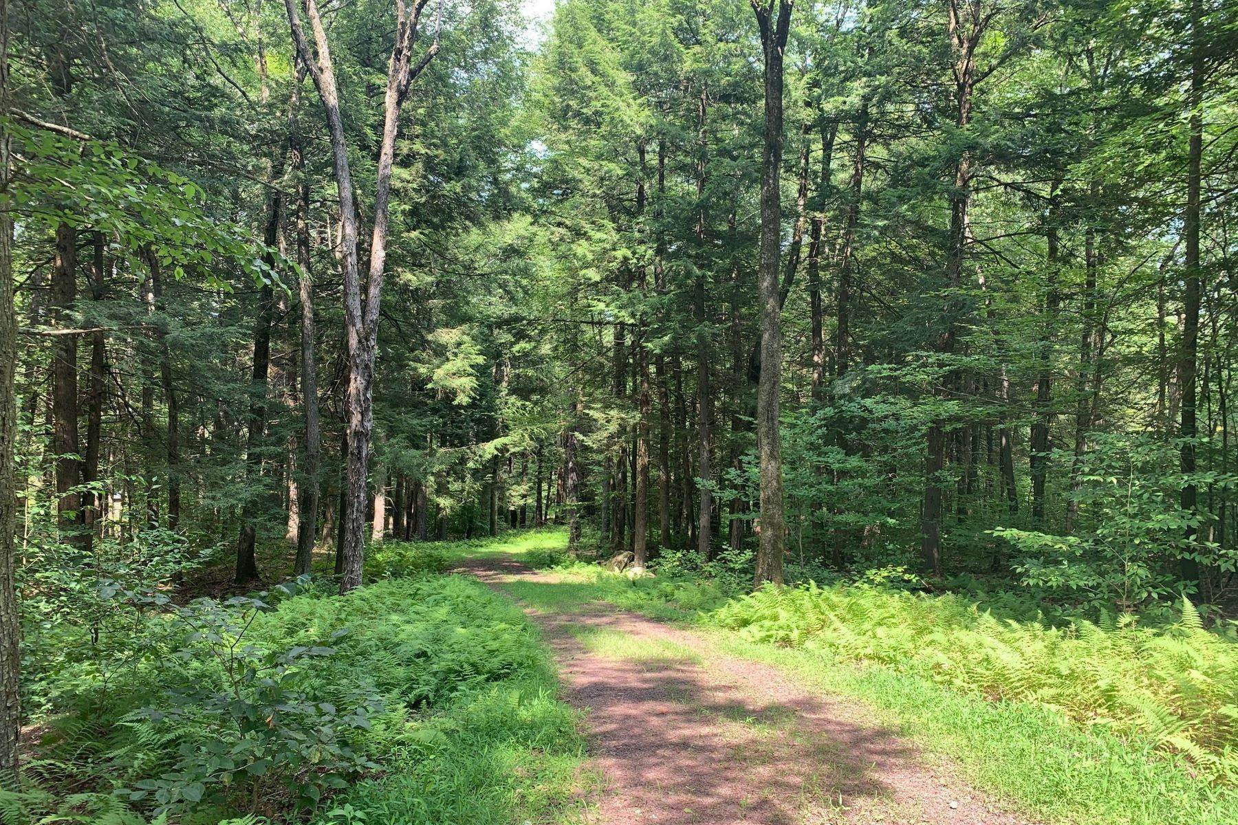 5. Land for Sale at Swinging Bridge Waterfront at The Chapin Estate Lot 23 Woodstone Trail Bethel, New York 12720 United States