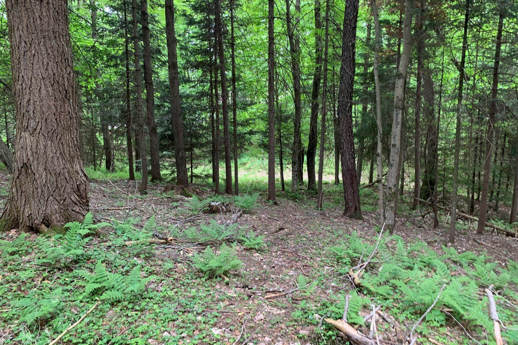 Land for Sale at Moose River building lot 287 Pine Street Thendara, New York 13472 United States