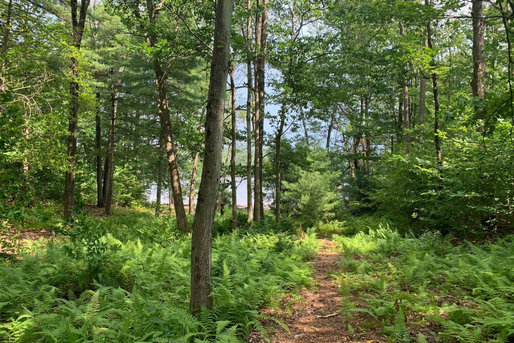 4. Land for Sale at Swinging Bridge Waterfront at The Chapin Estate Lot 23 Woodstone Trail Bethel, New York 12720 United States