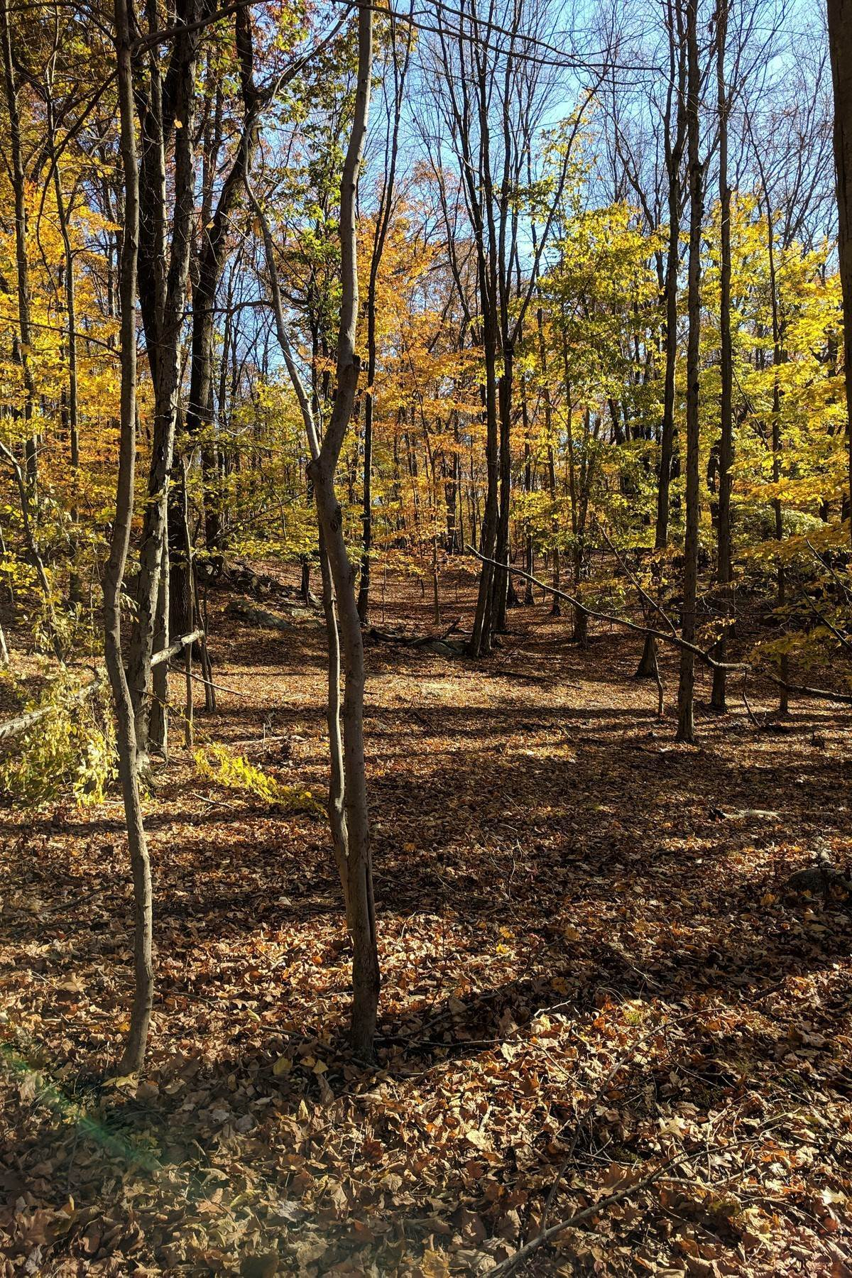 Land for Sale at Create your Dream Home 99 Teatown Road, Lot 3 Croton On Hudson, New York 10520 United States