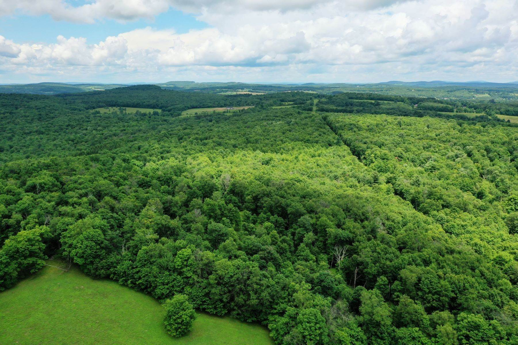 Land for Sale at Catskill Mountain Land with Endless Views Hayes Road Meredith, New York 13753 United States