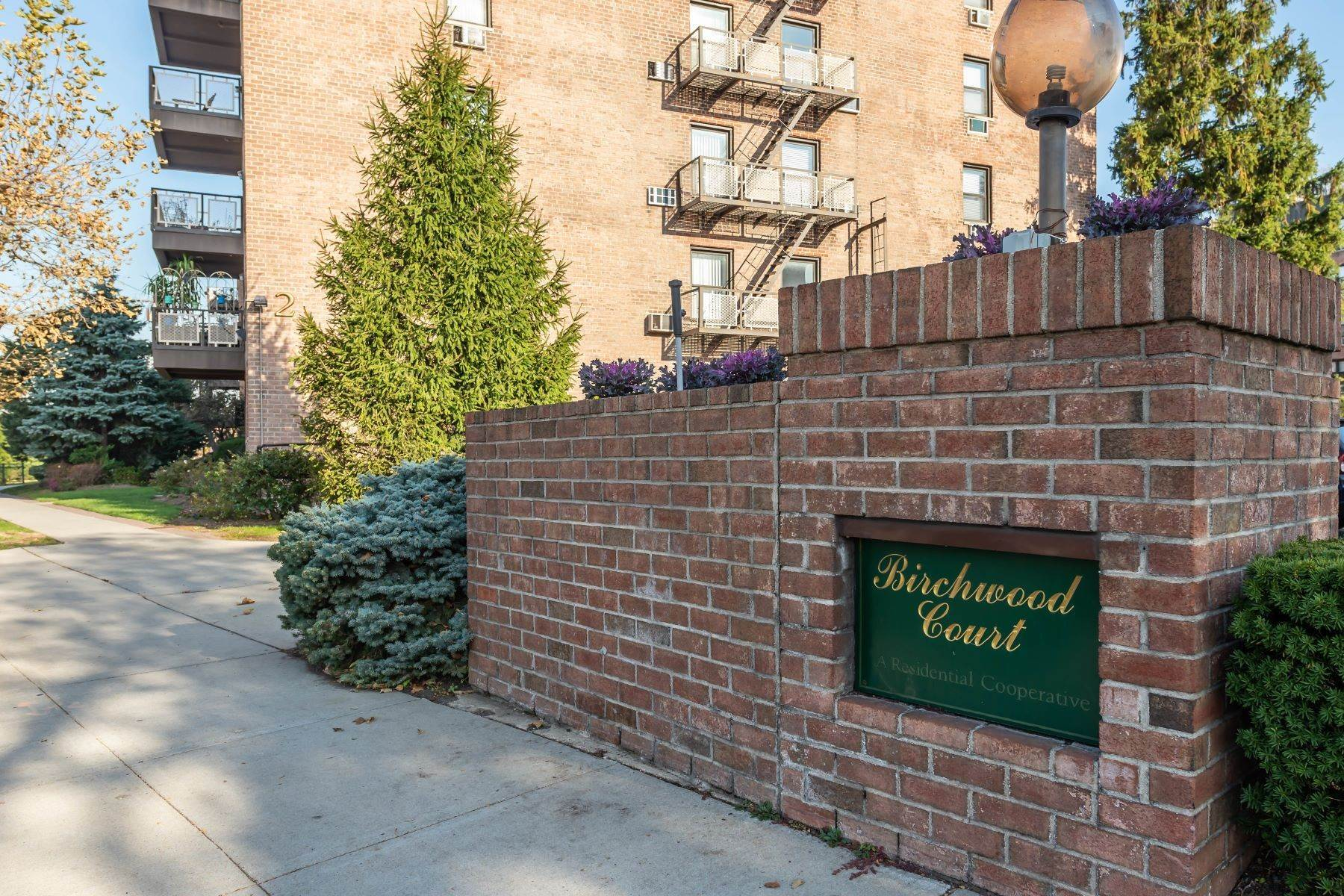 Co-op Properties for Sale at Mineola 2 Birchwood Court , 1M Mineola, New York 11501 United States